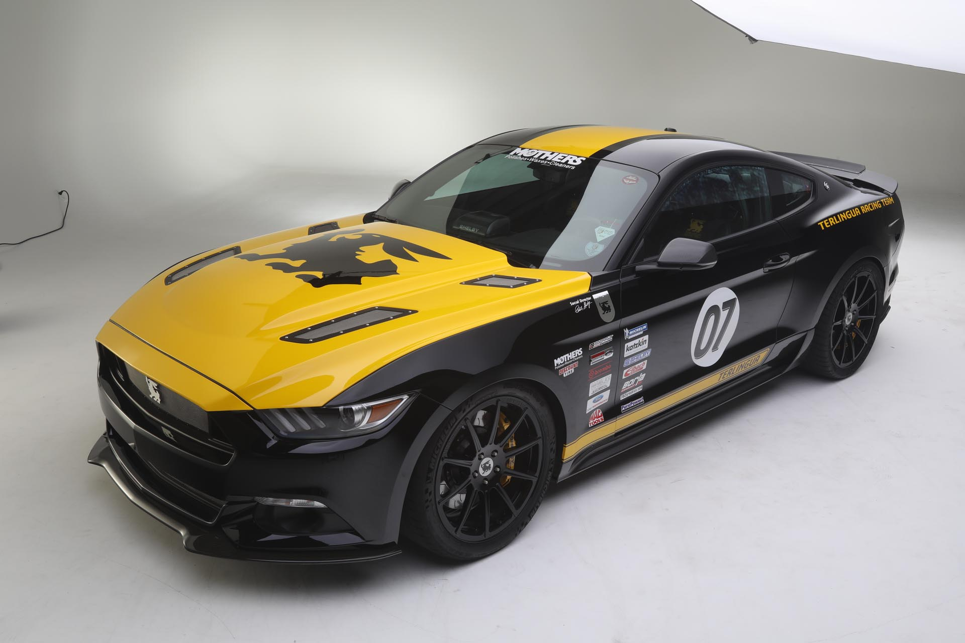 2016 Ford Shelby Mustang Terlingua GT Coupe